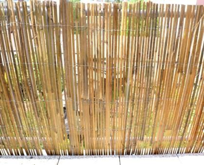 Stiepany bambus na plot